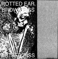 "ROTTED EAR/ BROWN PISS ""Rotted Piss"" split tape"