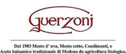 collaborazione Guerzoni