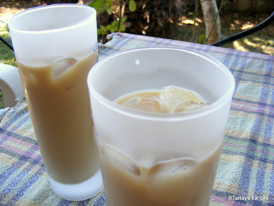 Turkish Iced Coffee