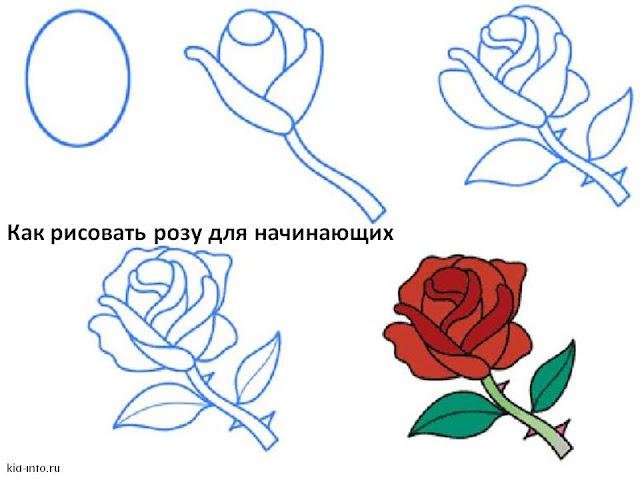 Как красиво и просто нарисовать розу поэтапно карандашом красиво