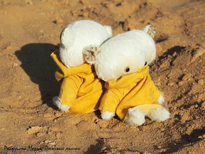 мишка на пляже тедди