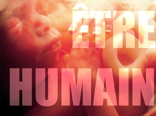 Foetus libellé: être humain
