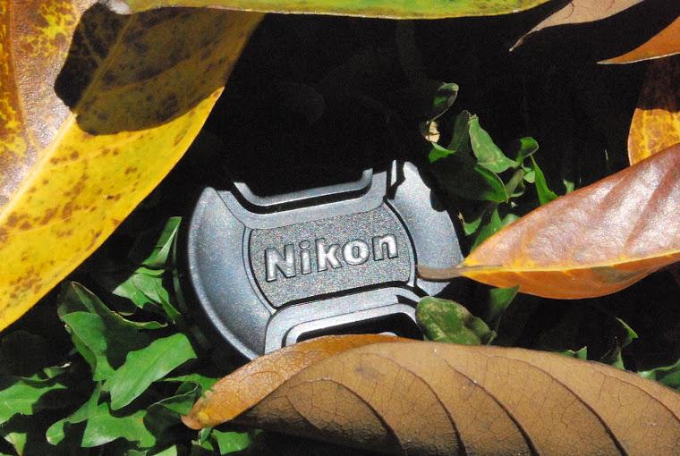 The lost Nikon