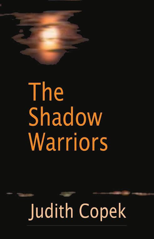 The Shadow Warriors