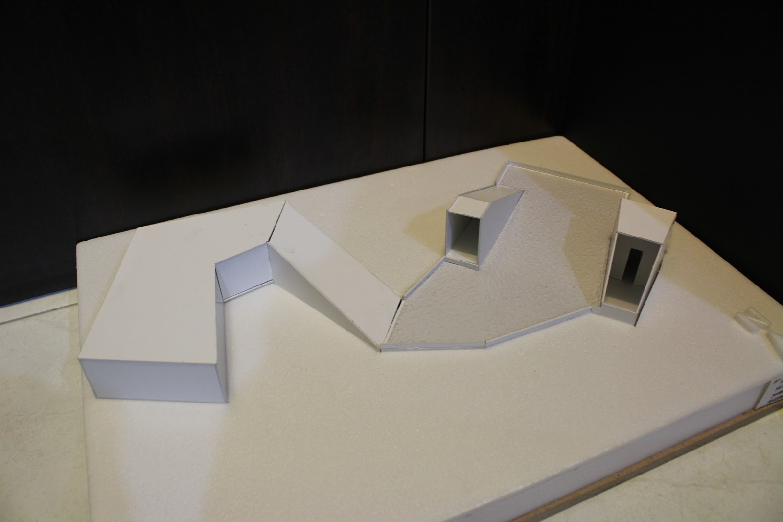 Architecture design studio 3 arc 2116 project 1 genius for Linear architecture design