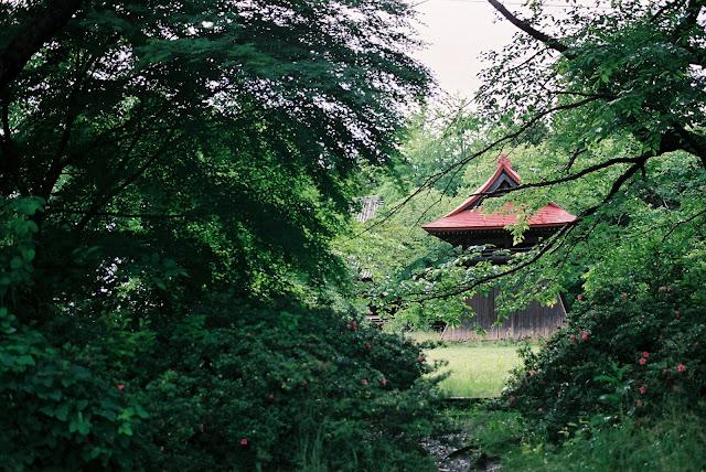奥にお堂 temple in the wood