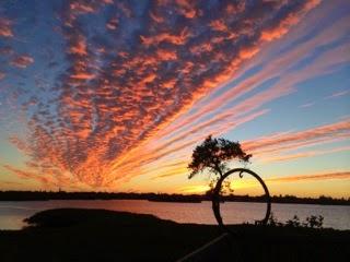 Sunsets Sarasota