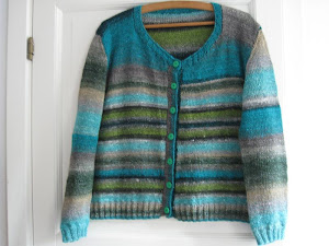 Noro cardigan