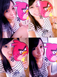 angry bird 四连拍 =P
