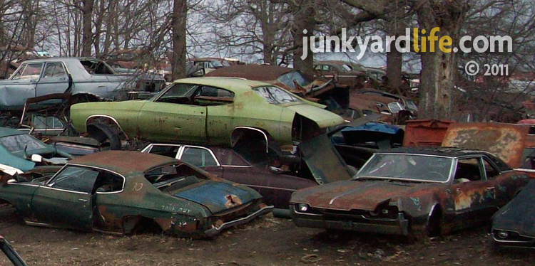 Junkyard Tour Classic Cars At USA In French Lake Minnesota