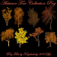 Autumn tree Collection Png Tubes