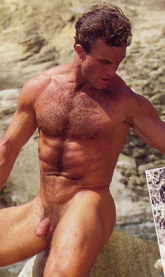 playgirl men erect Steve