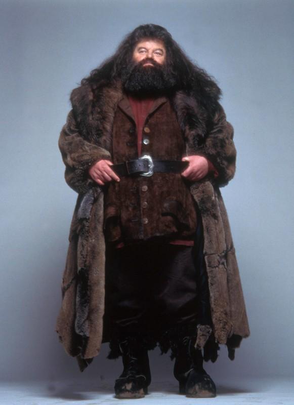 Rubeus Hagrid Costume Rubeus hagrid. a sorcery of milk