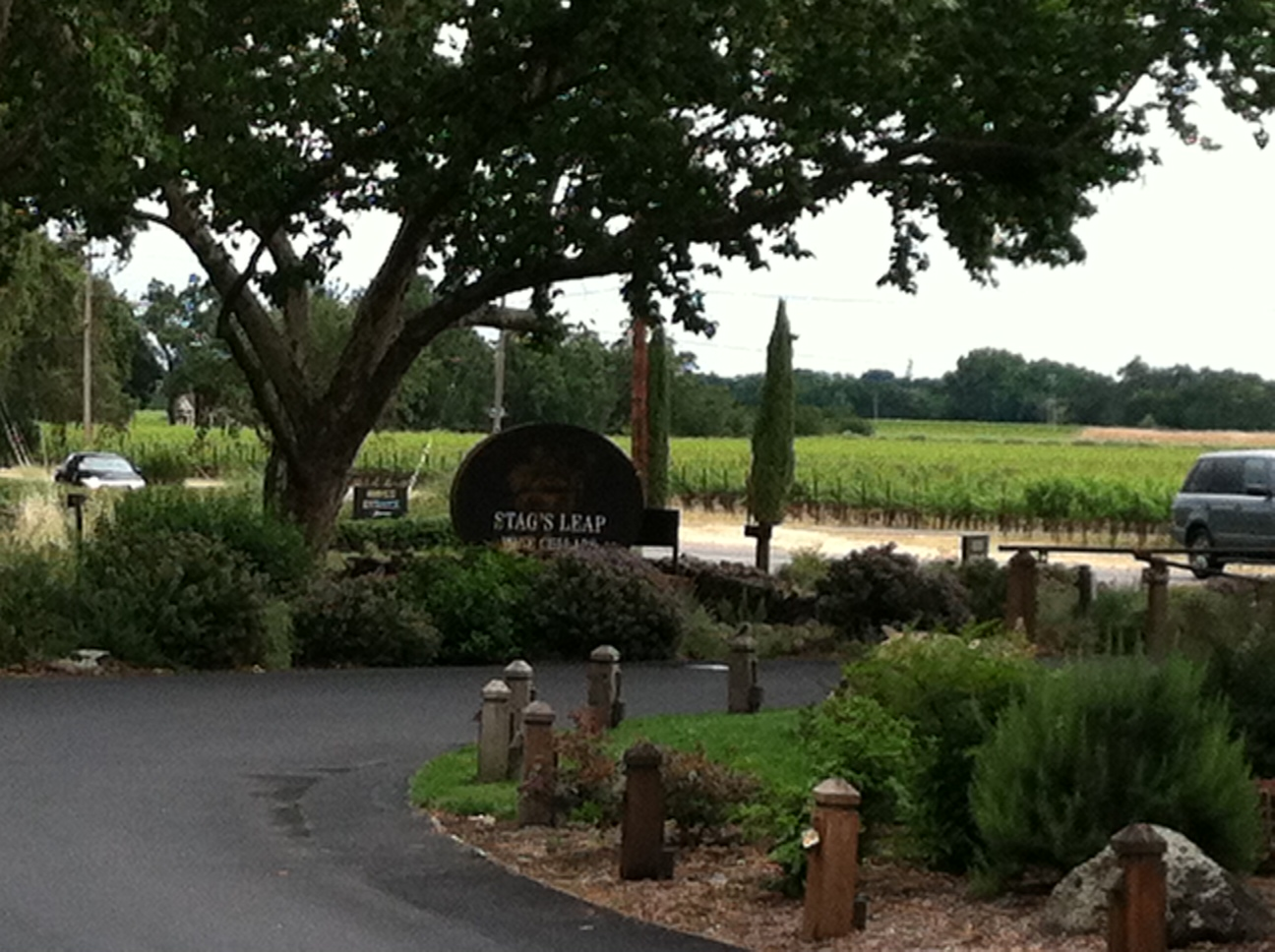 Link to Stags Leap Wine Cellars & Wine Scotch Rum and more: Stagu0027s Leap Wine Cellars