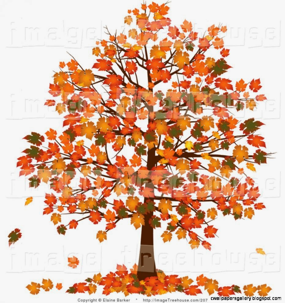 Tree on Pinterest  tree art fall trees and trees