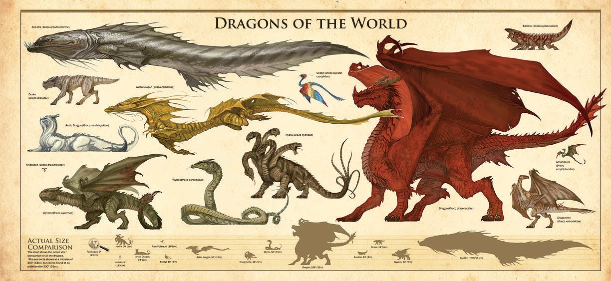 Dracopedia: Dragons of the World Poster