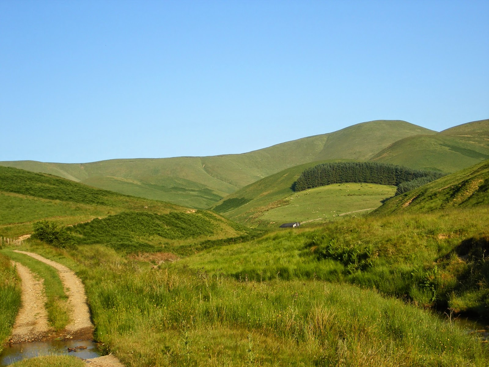 country farm landscape with hills and path in summer in scotland
