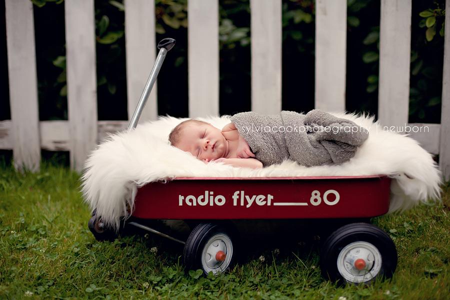 Marysville newborn photographer- baby in a wagon
