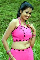 Sri, devika, hot, breast, and, navel, show