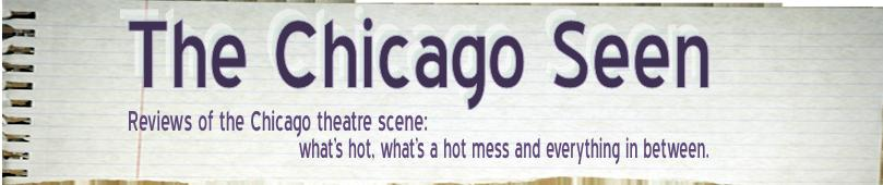 The Chicago Seen