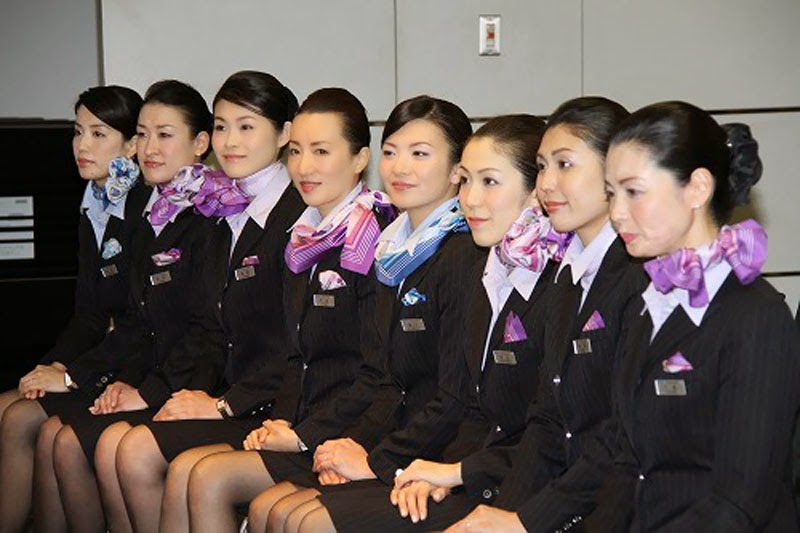 fly gosh  all nippon airways   ana   cabin crew