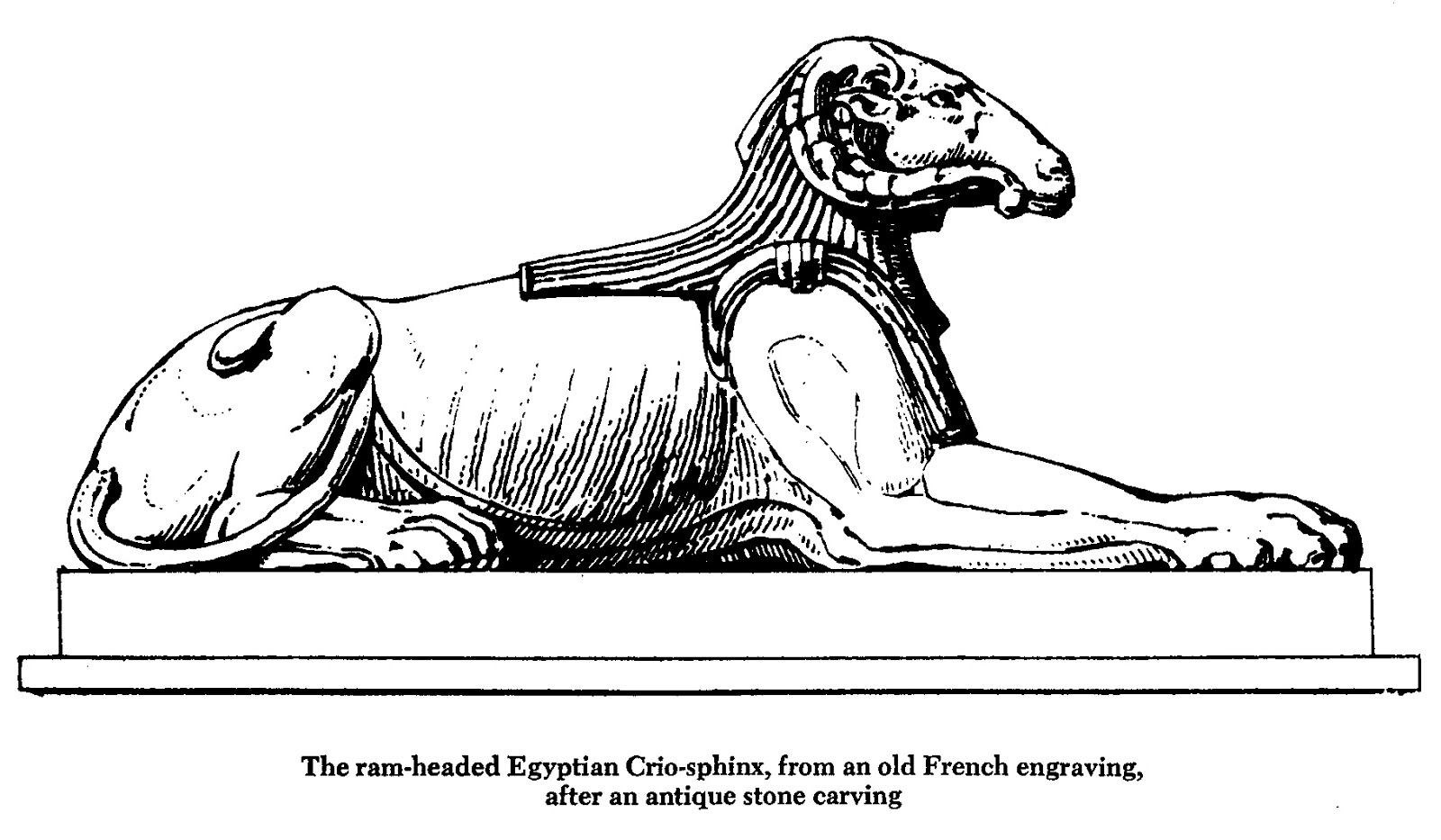 new page books creature of the month the enigmatic sphinx by