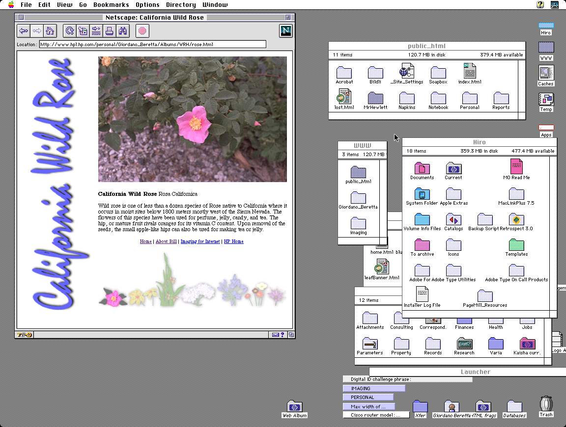 Working on the FlashPix demo with Mr. Hewlett's flower photos
