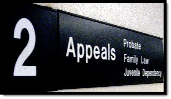 Hon. Robert C. Hight – Hon. Bunmi O. Awoniyi – Hon. Steven M. Gevercer – Hon. Tami R. Bogert – Hon. James M. Mize – Vance Raye - CJP Victoria B. Henley – Hon. Thadd A. Blizzard -3rd District Court of Appeal – Sacramento -Justice Vance W. Raye - Justice Cole Blease – Justice Ronald B. Robie – Justice William J. Murray Jr. – Justice George Nicolson – Justice M. Kathleen Butz – Justice Elena J. Duarte – Justice Harry E. Hull Jr. – Justice Louis Mauro – Justice Andrea Lynn Hoch – Third District Court of Appeal California - Benjamin B. Wagner – Melinda Haag – Jayne Kim – Victoria B. Henley – Elaine M. Howle - United States District Court Eastern District of California – Sacramento Federal Court – United States Courts - Judge William Shubb - Judge Edmund Brennan - Judge Garland Burrell Jr - Judge Carolyn Delaney - Judge Morrison England Jr - Judge Gregory Hollows - Judge John Mendez - Judge Kendall Newman - Judge Troy Nunley - Judge Allison Claire - Judge Dale Drozd - Judge Lawrence Karlton - Judge Kimberly Mueller – Office of the United States Attorneys Benjamin B. Wagner Eastern District of California, Judge Kevin R. Culhane – Hon. Kevin R Culhane – Judge Kevin Culhane -