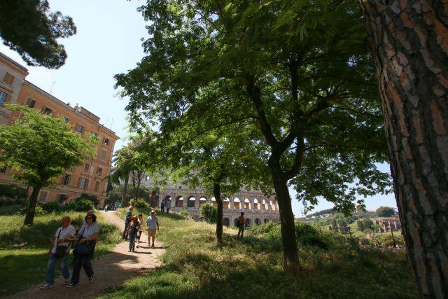 Blick auf das Colosseum in rom - als Familie in Rom unterwegs mit Kindern Frühstück bei Emma