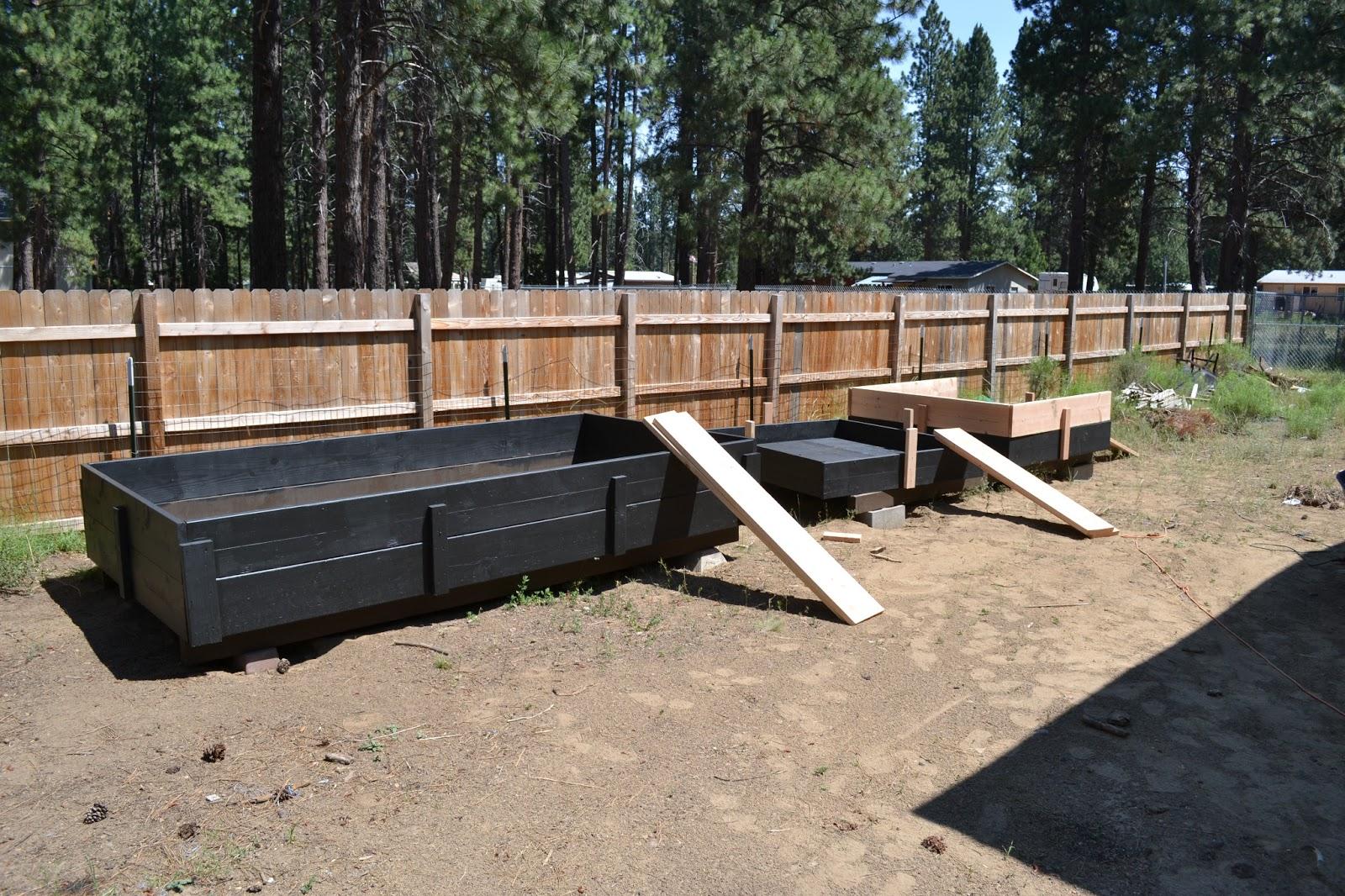 Ranchu notes building ranchu ponds process for Rigid pond liner