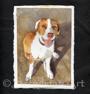 dog portrait in watercolor