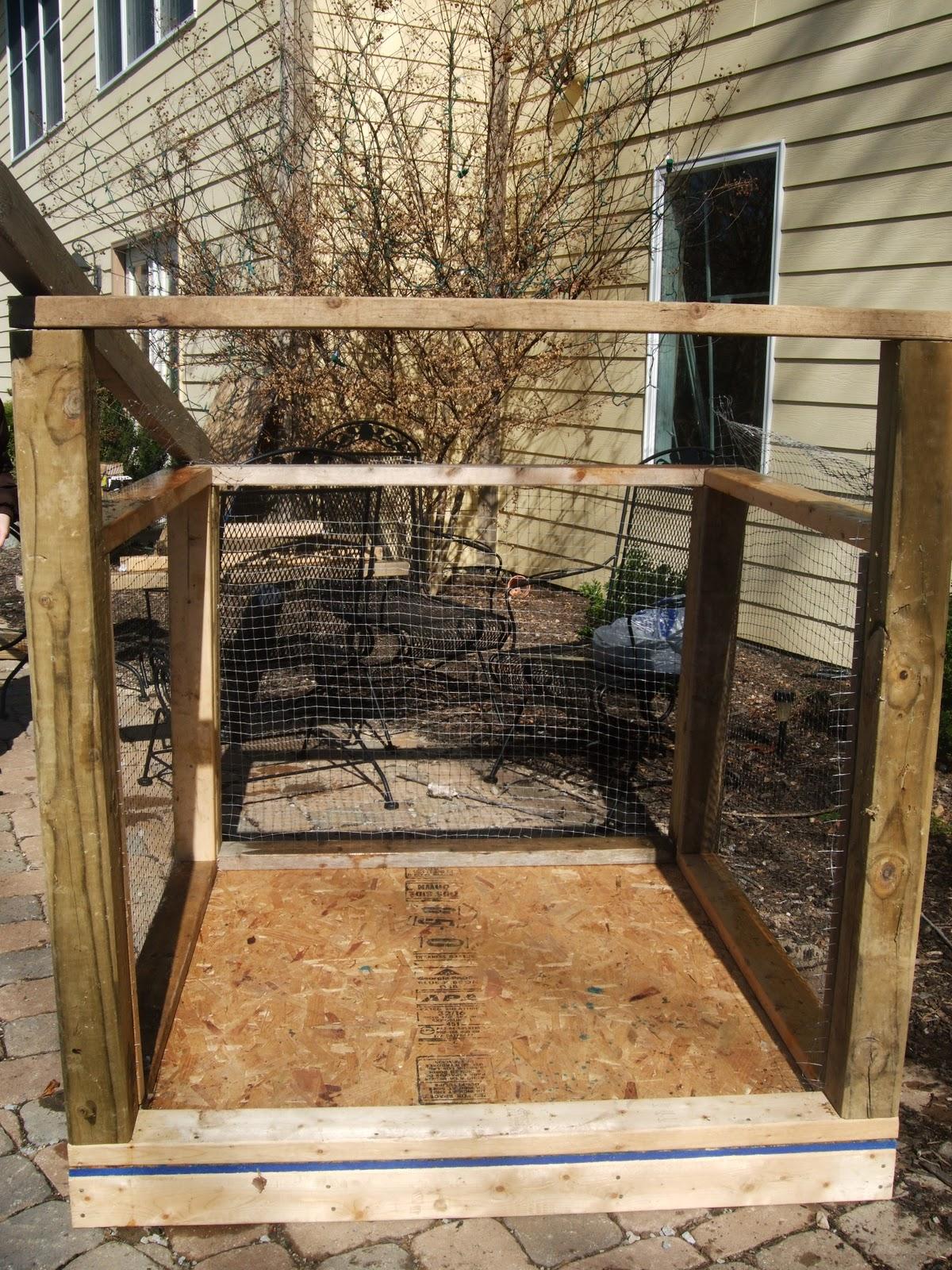 pam u0027s backyard chickens new brooder for baby