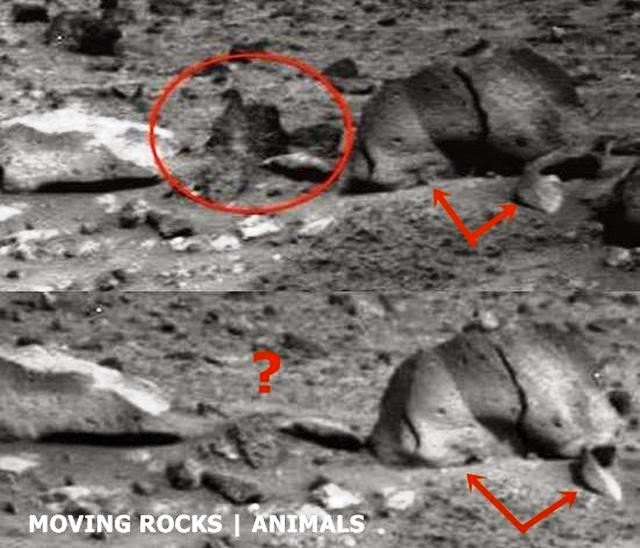 Mystery of the moving rocks on Mars photographed by the ...