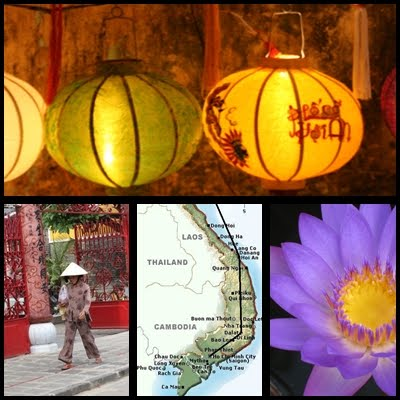 Discover Hoi An's Yellow