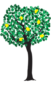 Lemon Tree - Jen Haugan Animation & Illustration