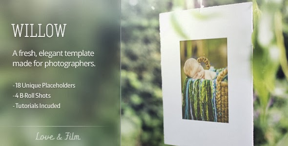 VideoHive Willow