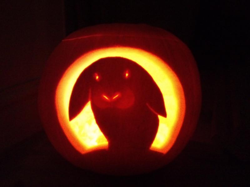Rabbits halloween buns