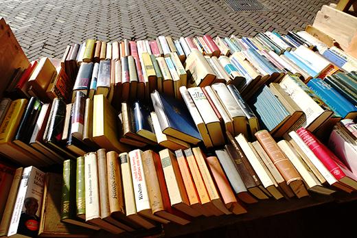 Ausflugstipp, Niederlande, Bücherstadt Breedevort