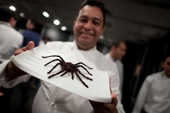 A fuego lento lo mejor del talento nacional. Chefs venezolanos dirán presente en el Festival Gourme