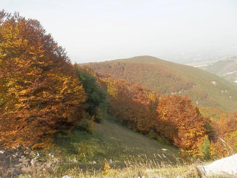Chieti 2 millennio chieti il fascino dei colori nei for Cabina innevata nei boschi