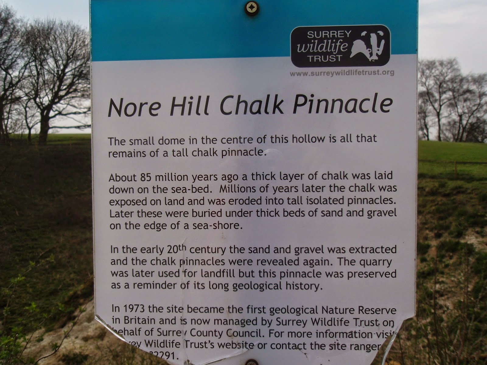 Nore Hill Chalk Pinnacle