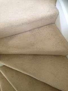 carpet cleaning cambridge before cleaning