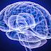 Δημιούργησαν «διακόπτη» που... σβήνει τον εγκέφαλο !