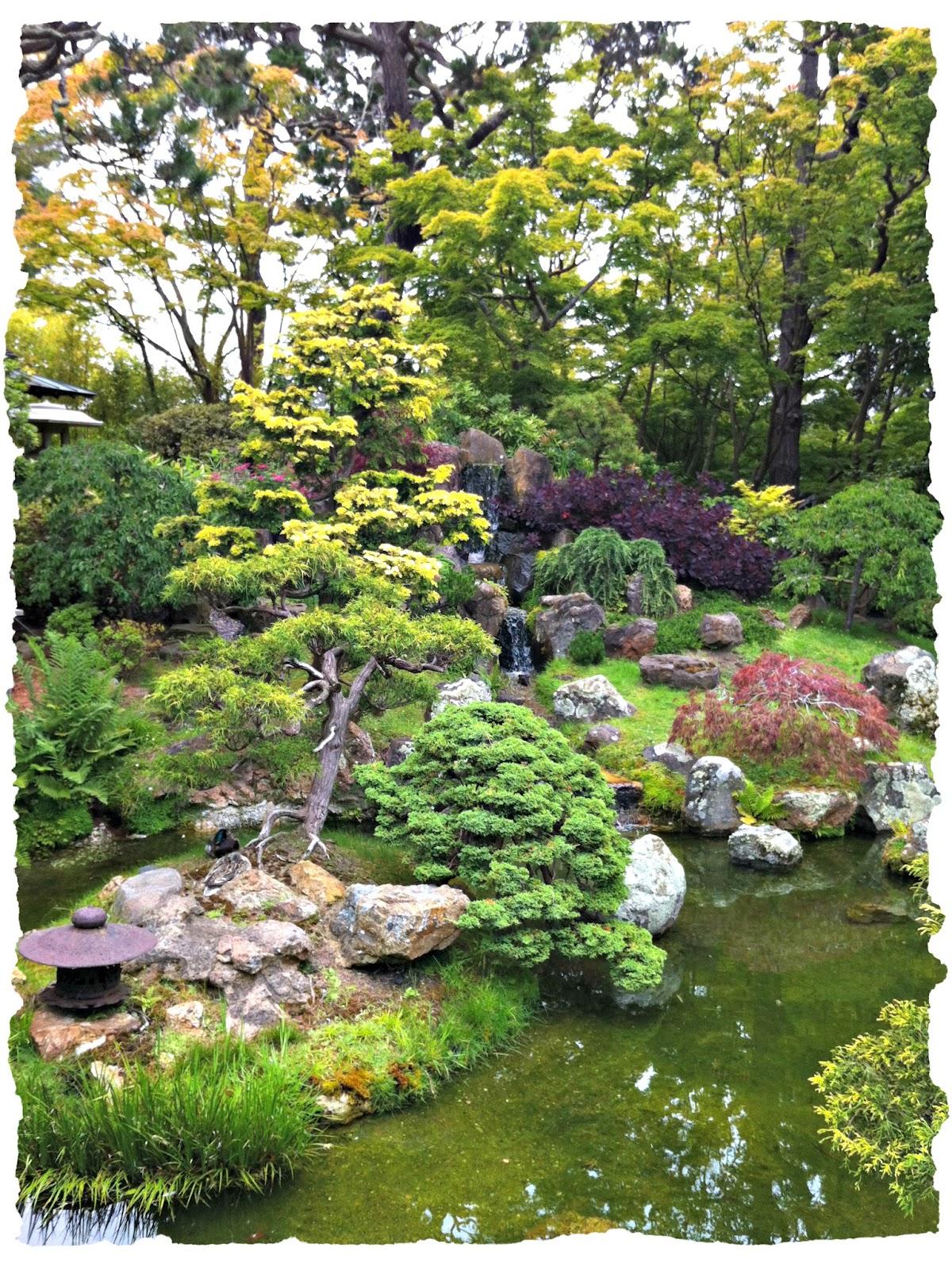 Man Caves Japanese Tea Garden : Rinis reisen japanese tea garden