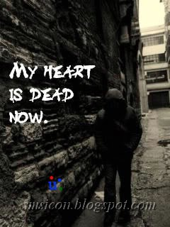 Funny Photos Free SMS JokesLove MessagesFriendship Quotes Broken Heart And Miss U