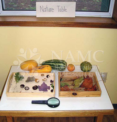 NAMC montessori how to create home prepared environment nature table