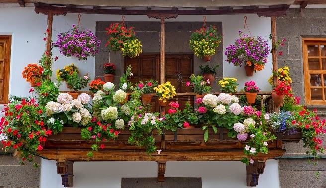 Como decorar tu terraza junio 2014 - Plantas terraza ...