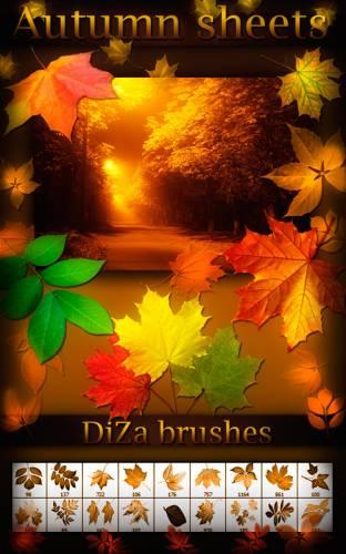 Photoshop sonbahar yaprak fırça seti