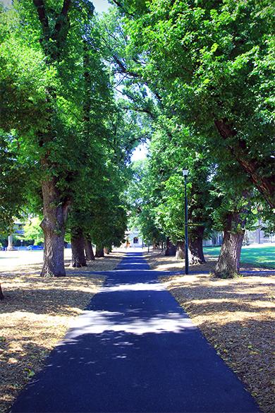 Fawkner Park Pathway