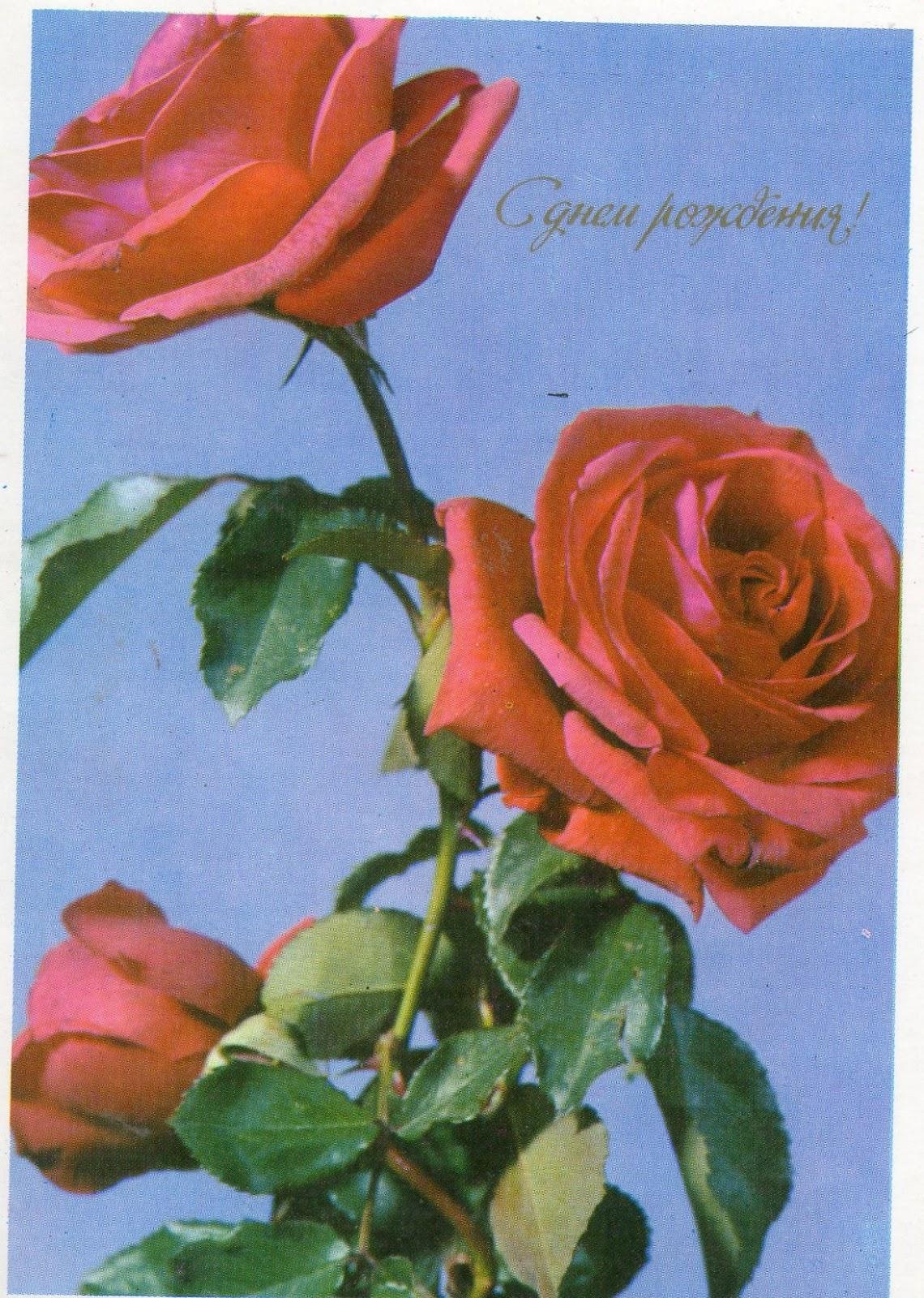 Картинки про любовь со смыслом скачать бесплатно - прикольные картинки про любовь скачать бесплатно
